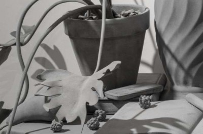 HANS OP DE BEECK - 'Small things and soothing thoughts'