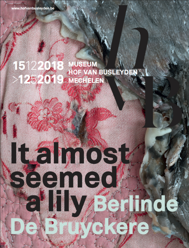 BERLINDE DE BRUYCKERE 'It almost seemed a lily'